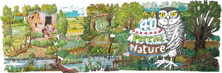 Montage_40ans